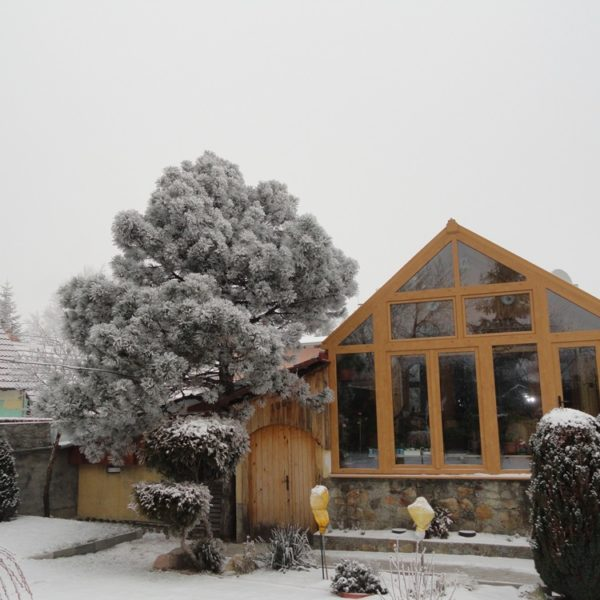 Télikert, lakótélikert, sunwood télikertek, teraszbeépítés